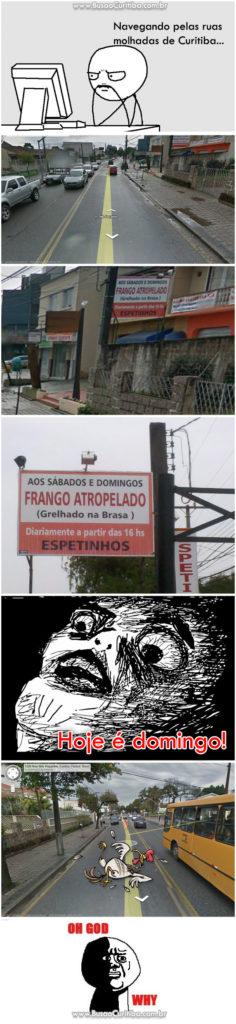 Frango atropelado em Curitiba